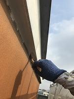 8-29軒天井ケンエース上塗り1回目塗装(1)