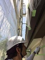 6-19軒天井ケンエース1回目塗布 (2)