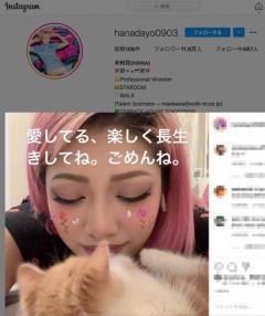 木村花さんを誹謗中傷のアカウント、死後に続々削除