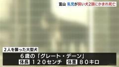 生後11か月の乳児が飼い犬2頭に頭をかまれ死亡 富山