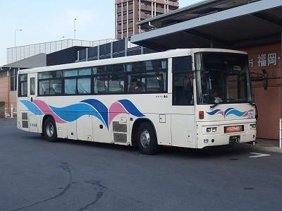 P1181732
