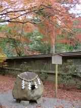 紅葉in奈良05