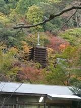 紅葉in奈良03