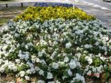 平和記念公園03
