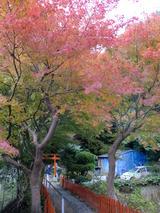 紅葉in奈良01
