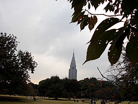 新宿御苑から見たドコモタワー