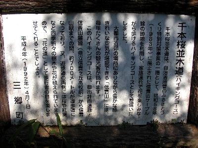 千本桜並木道