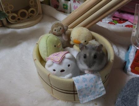 27風呂-3
