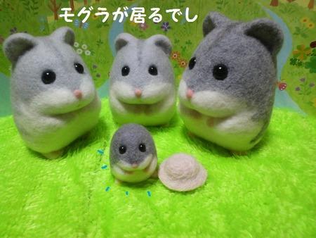 2018.8.9こた-1(せりふ-1