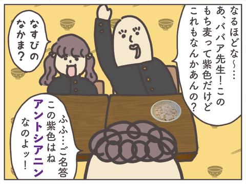 するり麦-12