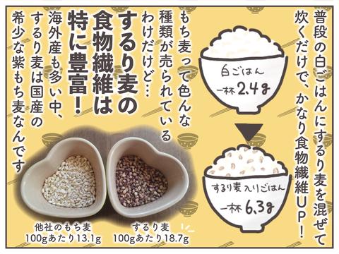 するり麦-09