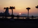 百道浜の夕日