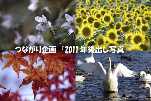 111217つながり企画「2011年後出し写真」