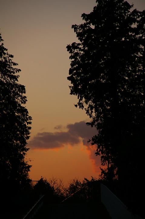 20131120_最近、夕方が綺麗でね03