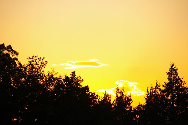 20131120_最近、夕方が綺麗でね02
