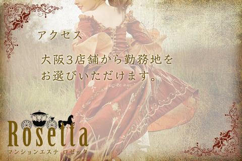 Rosetta_access