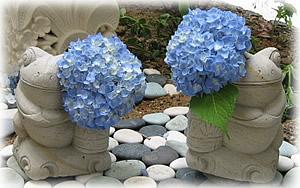 バリ島石像、筒もちカエルに紫陽花を…