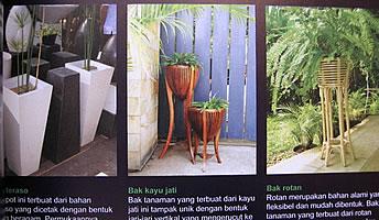植木鉢に関する記事も・・・