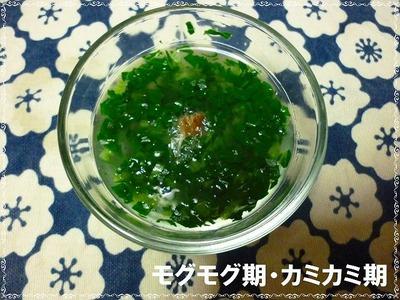 小松菜おひたしモグモグ