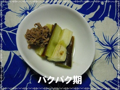 牛肉なすび煮