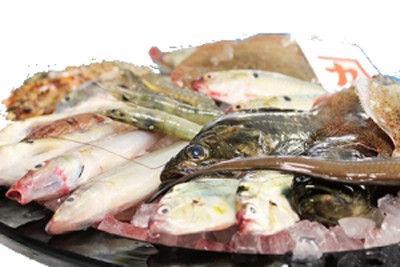 finish-fish