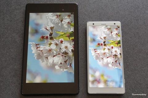 Nexus7&XperiaXZ2