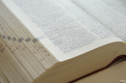 DictionarySlump