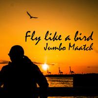 Fly like a birdジャケ