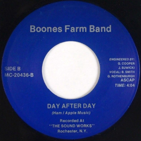 Boones Farm Band - Day After Day
