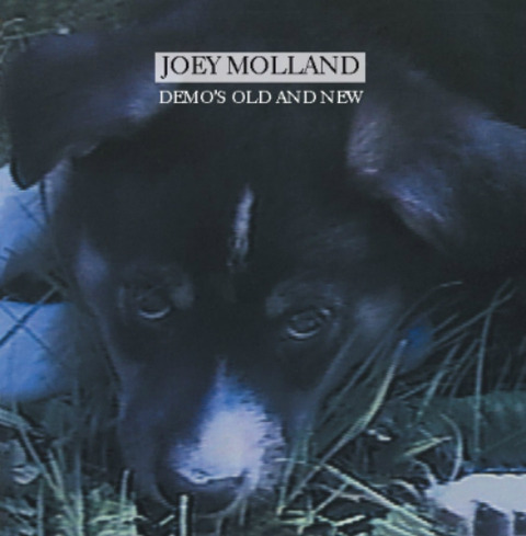 Joey Molland - Demos Old And New (2014)
