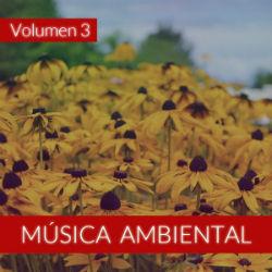 The Sunshine Orchestra Música Ambiental (Volumen 3) inst