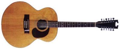 Bangla Harptone 12 String Guitar 01