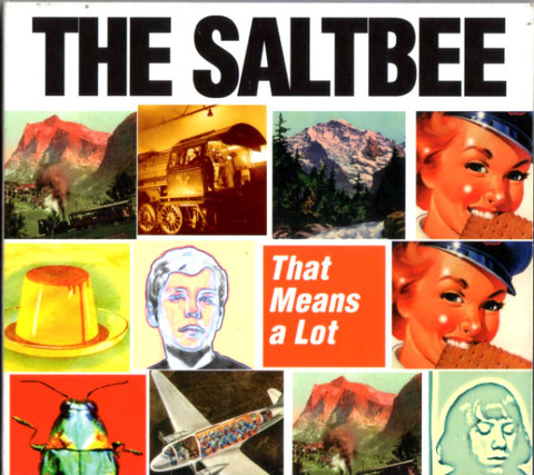 The Saltbee That Means a Lot a