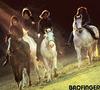 Badfinger - riding around in the dark