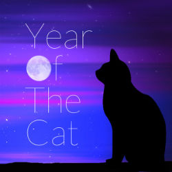 The Sunshine Orchestra Year of the Cat