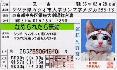 20060430204923