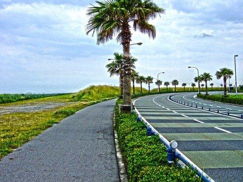 東京ディズニーリゾート外周道路で無人で走行するバイクが目撃される