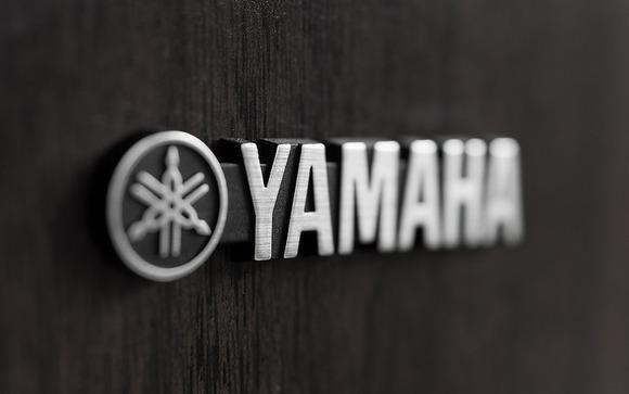 三大なんの会社かわからない会社「ヤマハ」「アイリスオーヤマ」
