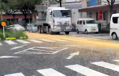「こーんなの見たことない」トウモロコシが道路を長さ300メートルにわたって黄色に染め上げる