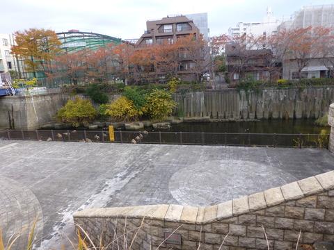 28目黒川