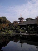 珍しい角度からの浅草寺五重塔