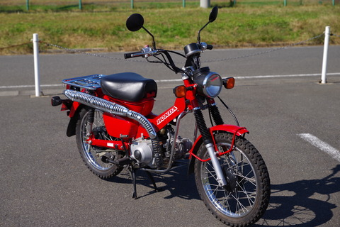 IMGP2995