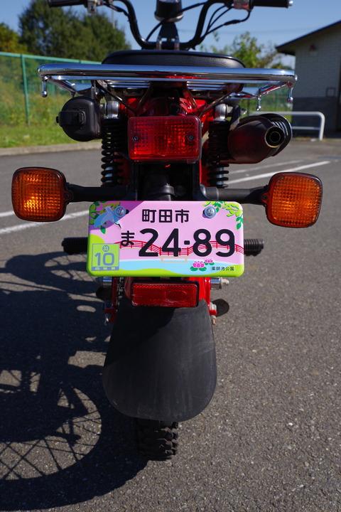 IMGP3009