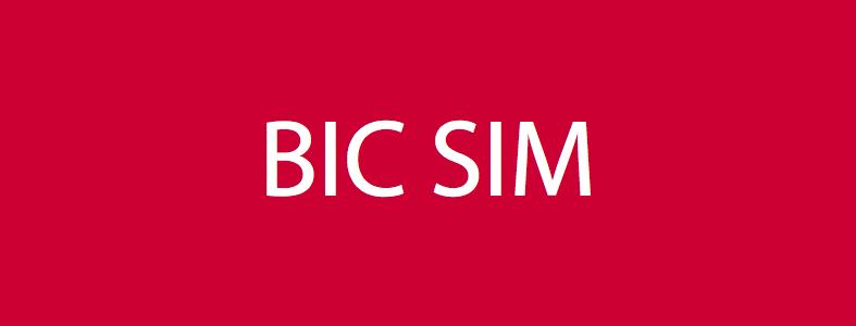 bic-sim