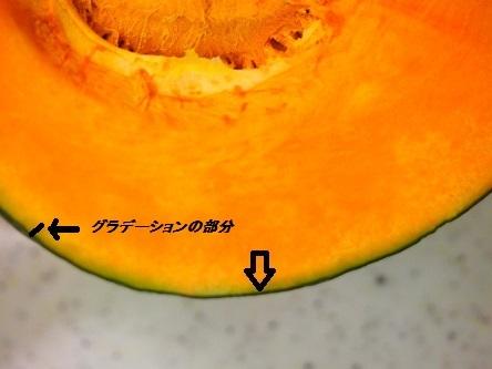 グラデーション かぼちゃ