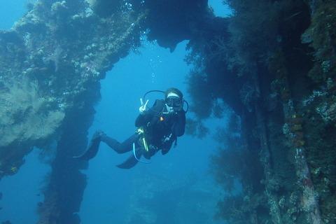 沈潜ダイビング