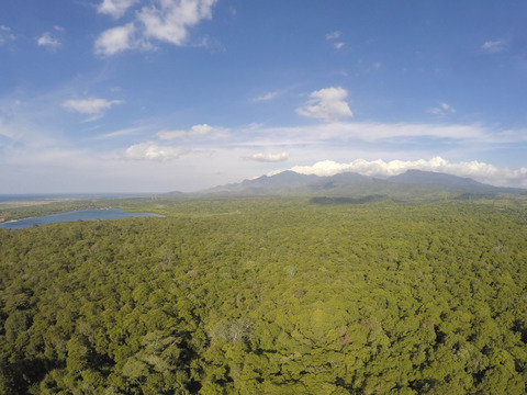 West Bali National Park