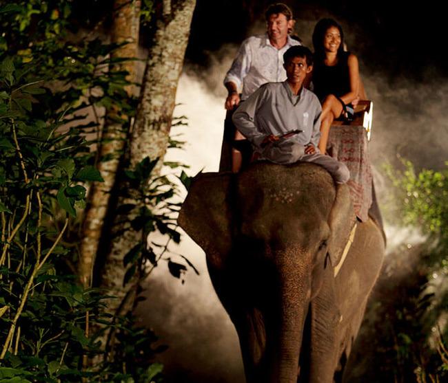gallery-night-safari-3
