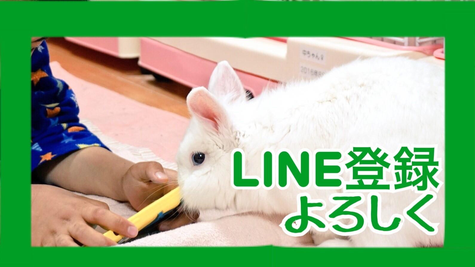 LINE読者登録よろしくお願いします