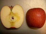 蜜たっぷりんご